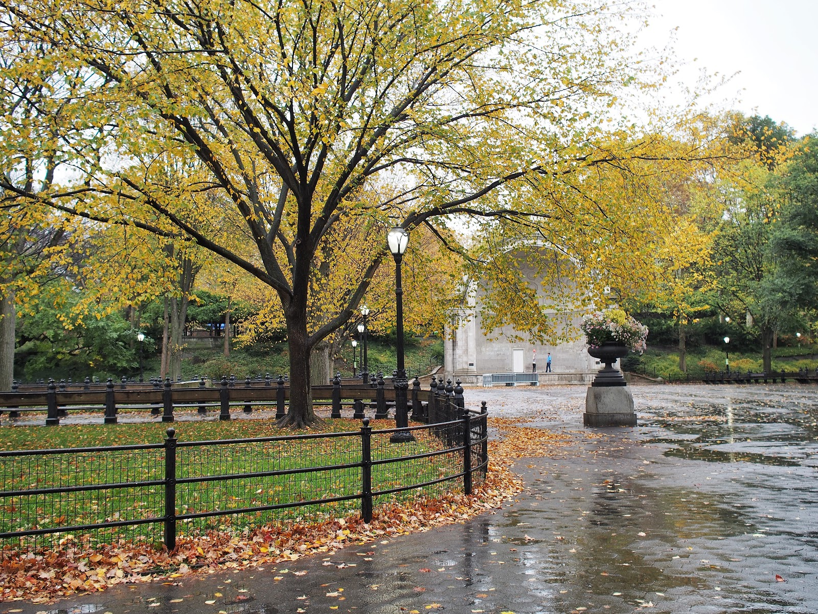 The Bandshell, #thebandshell #centralpark #nyc #fall #fallfoliage #rainyday 2014