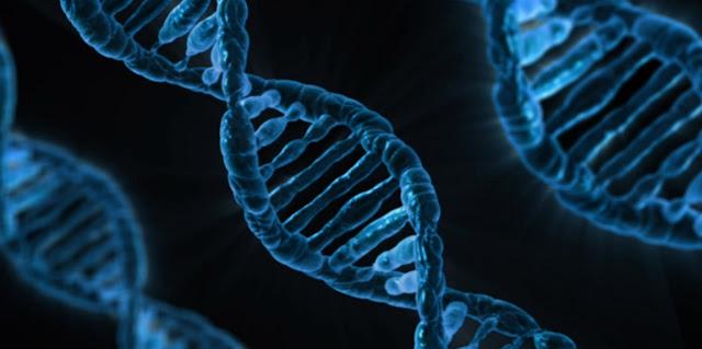 Locus genico y biologia