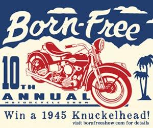 Born-Free X