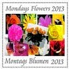 Montagsblumen