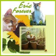 Remembering Eric