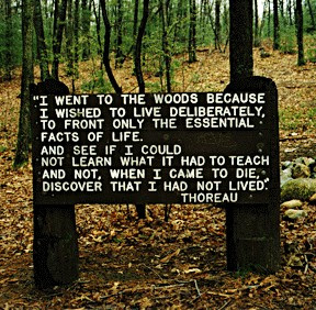 I went to the woods because I wished to live deliberately,  To front only the essential facts of life.  and see if I could not learn what it had to teach  and not, when I came to die, discover that I had not lived