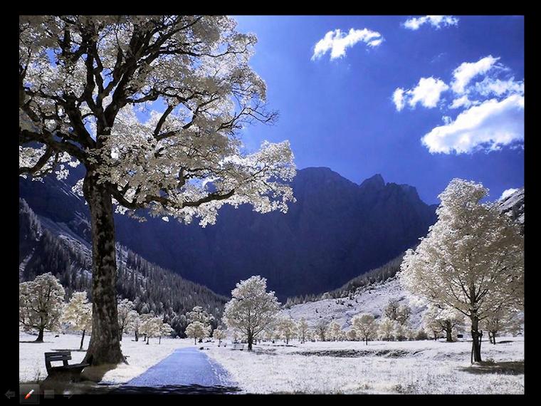 Belleza y Plenitud con nevada