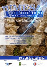 """IV MESA DE INTERCAMBIO DE MINERALES, ROCAS Y FÓSILES """"VILLA DE BEMBIBRE 2014"""""""