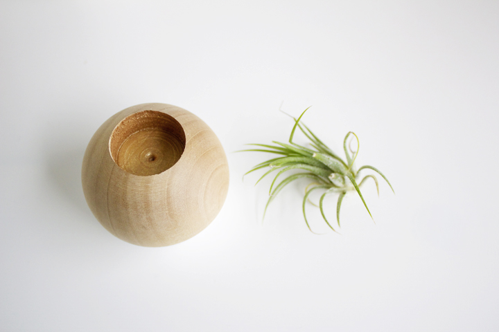 12 Minute DIY // Dipped Wood Air Plant Pot