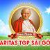 Văn Phòng Caritas TGP Sài Gòn