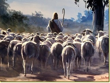 Why Does God Call Us Sheep