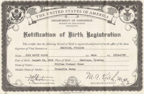 Stop The Pirates Birth Certificate Explained