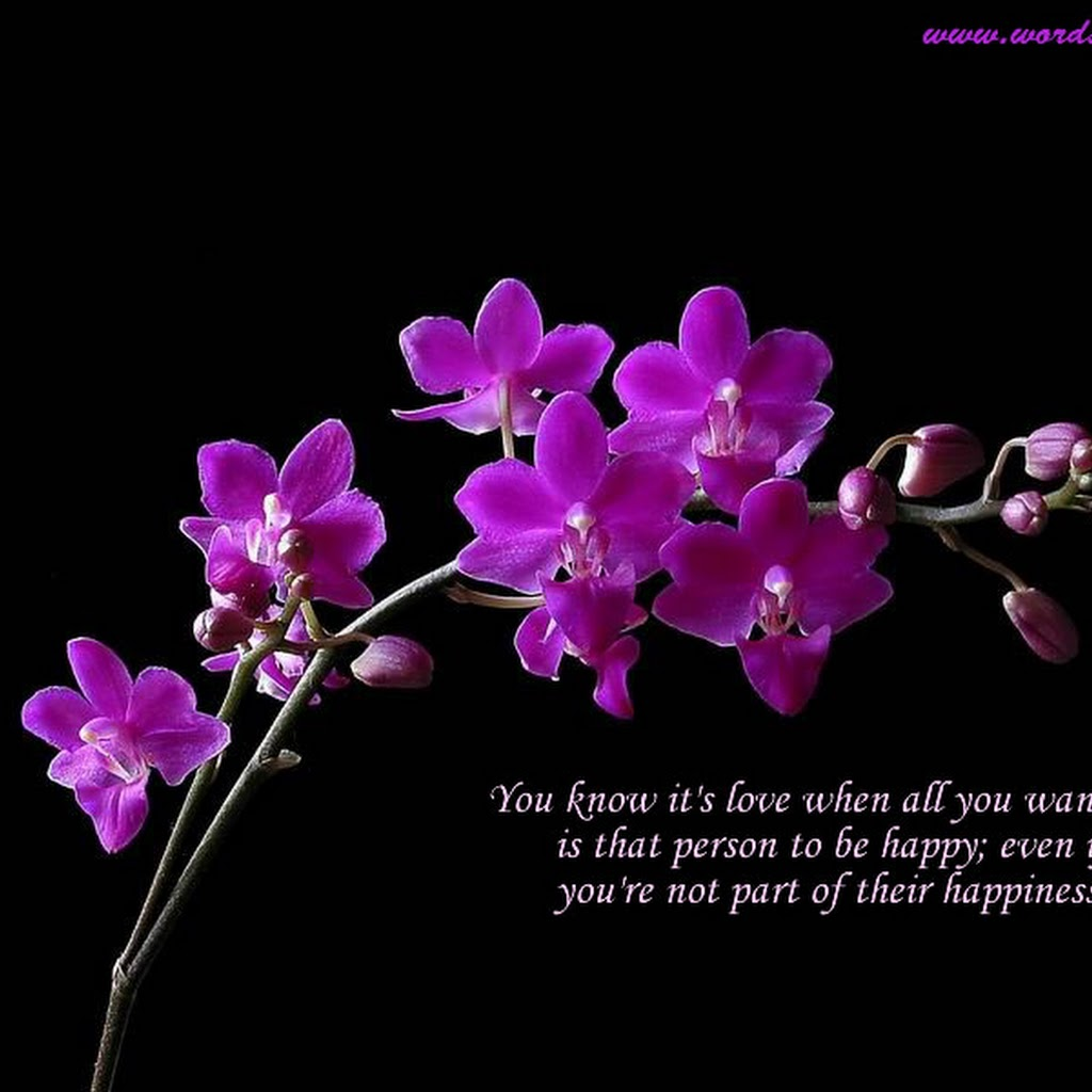 Most Beautiful Images Of Flowers With Quotes