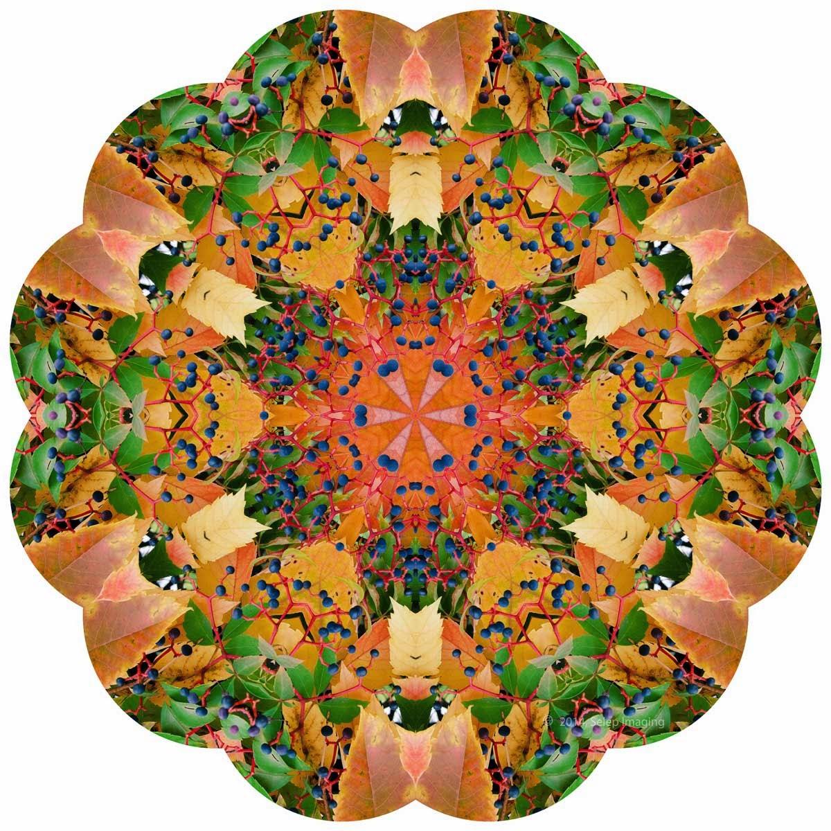 Kaleidoscope Photo Art fall by Jeanne Selep