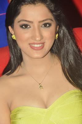 Gorgeous hot sexy Richa panai at cinemaa awards