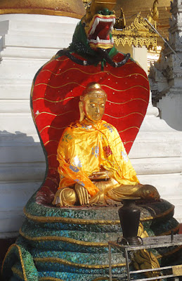 Sitting Buddha shielded by the Naga