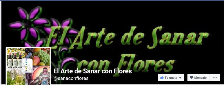 EL ARTE DE SANAR CON FLORES