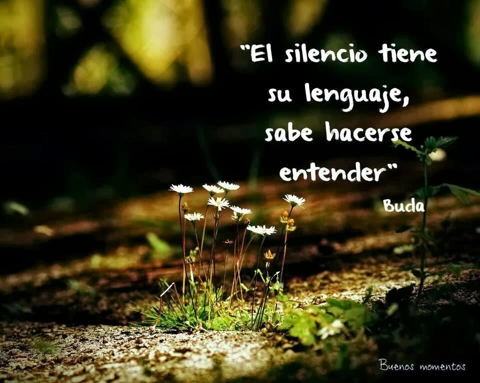 El silencio y su lenguaje