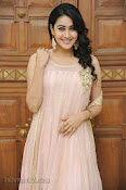 Panchi Bora Photo gallery at Prabhanjanam audio-thumbnail-19