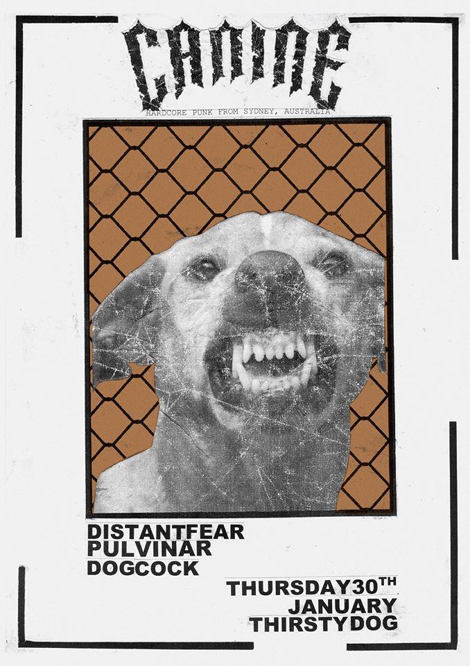 Canine (Aus) NZ Tour 2020 AKL Show