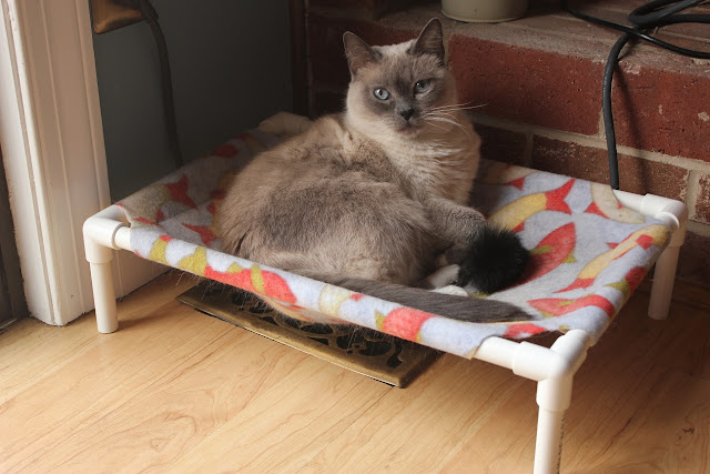 Make Your Own Wooden Cat Dog Bed
