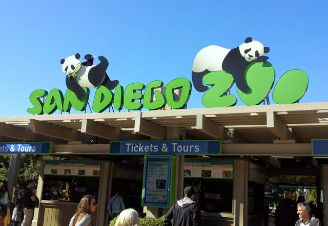 A Brief San Diego Visitor's Guide // Visit the San Diego Zoo