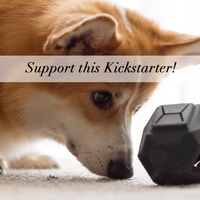 https://www.kickstarter.com/projects/updogtoys/the-odin-a-puzzle-dog-toy-with-a-modern-modular-de