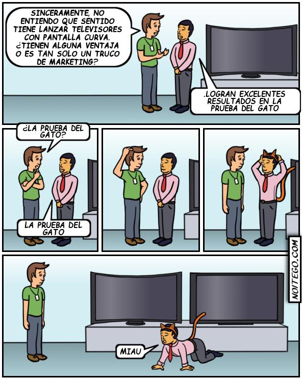 imagenes graciosas - La prueba del gato