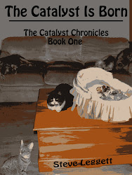 The Catalyst is Born - The Catalyst Chronicles - Book One