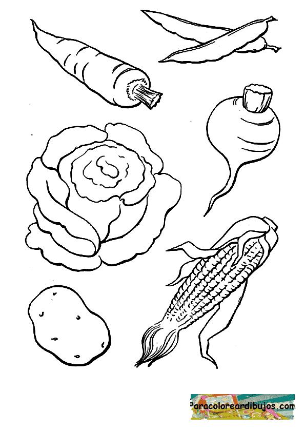 hortalizas para colorear