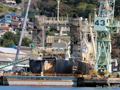 Baleeiros japoneses fazem seu primeiro ataque da temporada – na Sea Shepherd