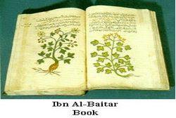 Sabily Ibn-AlBaytar