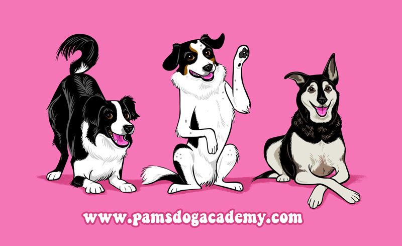 Pam's Dog Academy