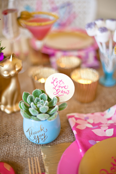 Earth Day succulent favors