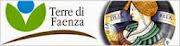 Terre di Faenza