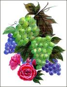 Composição com flores e cachos de uvas ( lápis de cor)