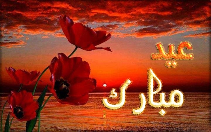 Eid Mubarak Flower Greetings Cards Wallpapers