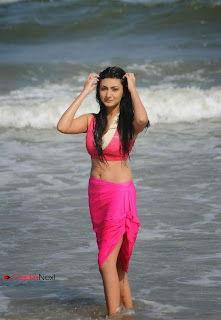 Actress Neelam Upadhyay  Wet Picture Gallery in Pink Bikini Top 0058.jpg
