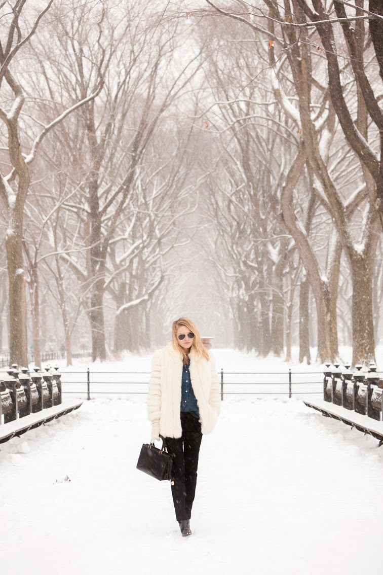 Snowy nyc, New York, Central Park, outerwear, snow globe, snow storm, vintage leather bag