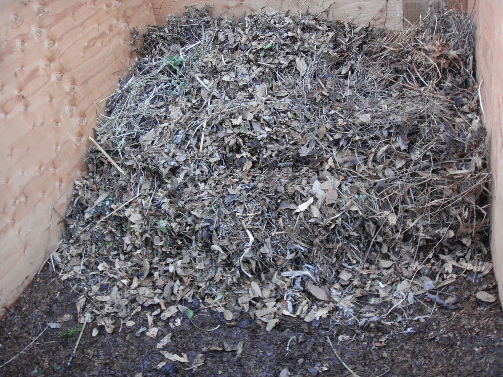New Compost Pile Just Started in The Oracle's Garden, First Layer of Brown Material From Spring Cleanup such as Dried Leaves, Clippings from Flower Borders and Beds, and Chopped Up Small Branches or Twigs along with General Yard Debris.