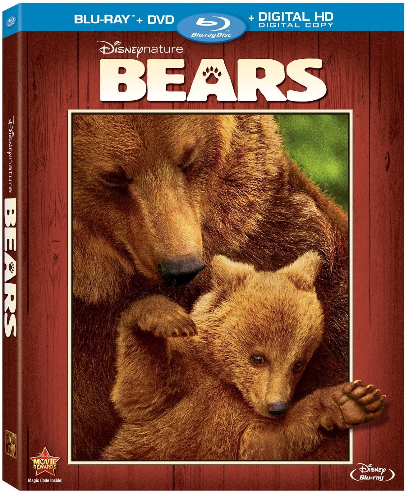 Bears+Disneynature+Released+Blu-ray+Combo+August+2014