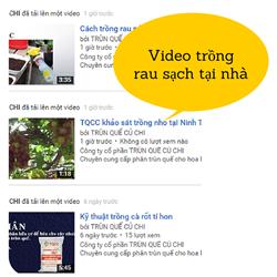 https://sites.google.com/site/videotqcc/rau-sach-tai-nha