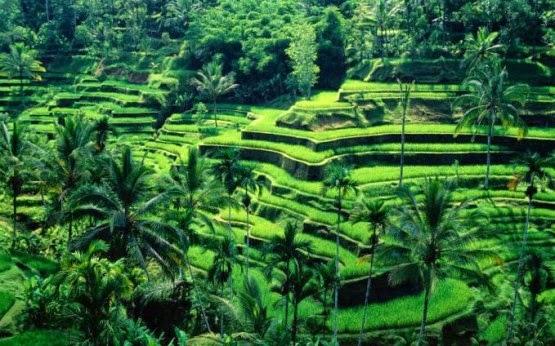 Indonesia Hebat dan Indah