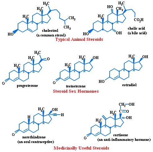 steroid hormone molecular structure
