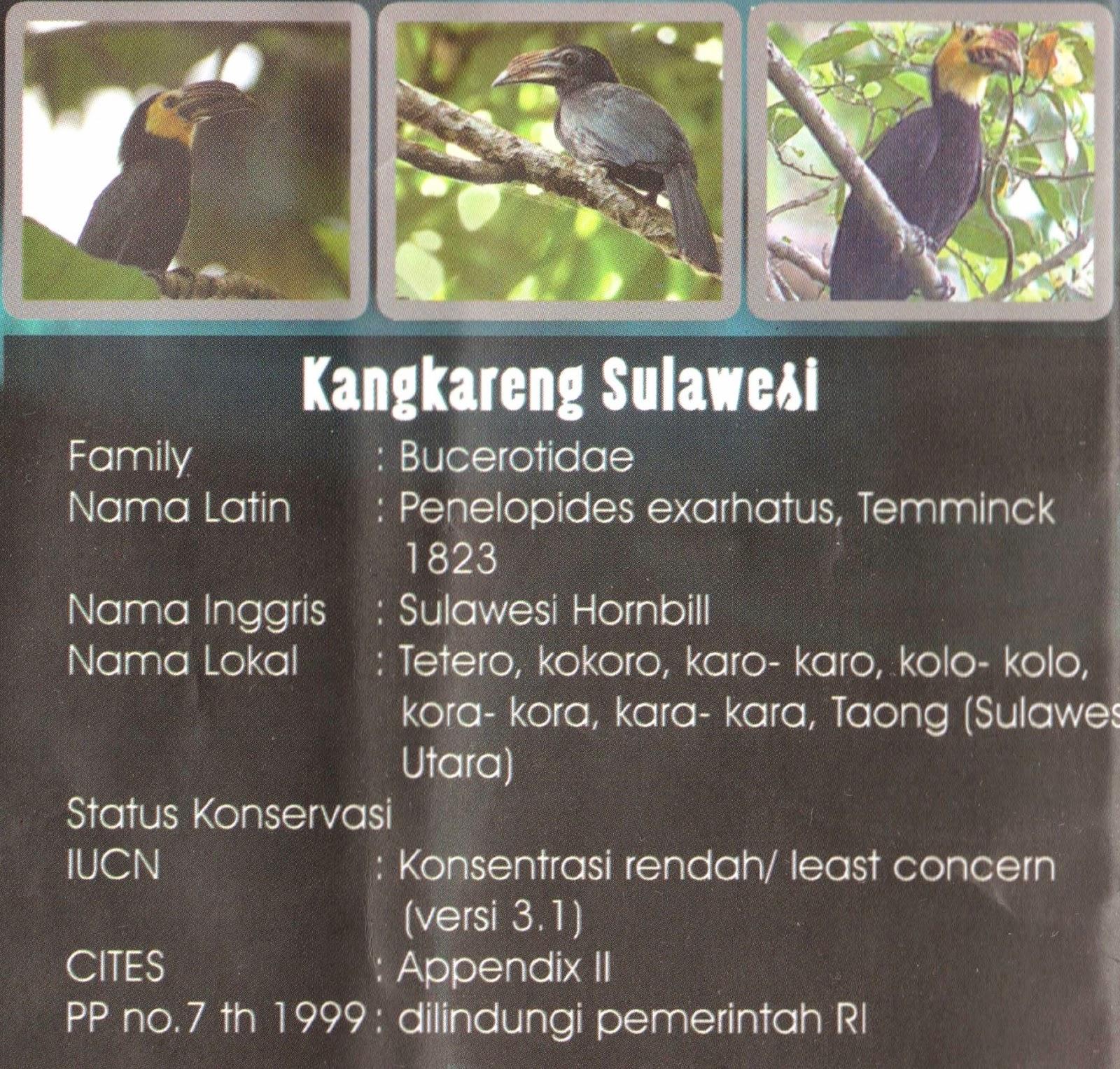 Kangkareng Sulawesi
