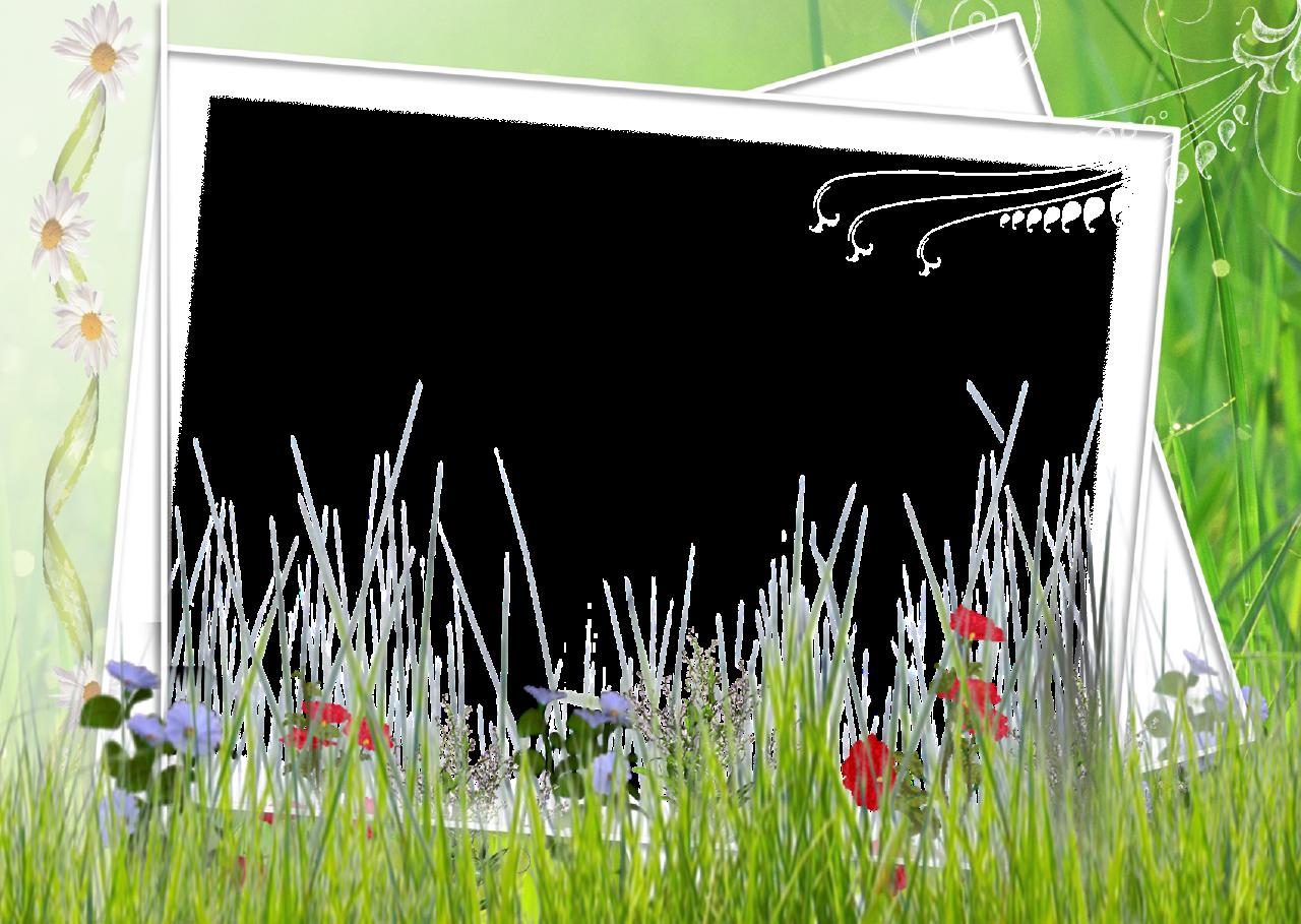 Forgetmenot grass frames for Grass border