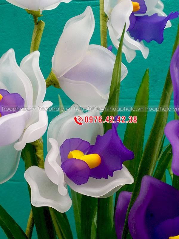 Mẫu hoa địa lan tím trắng - hoa pha lê