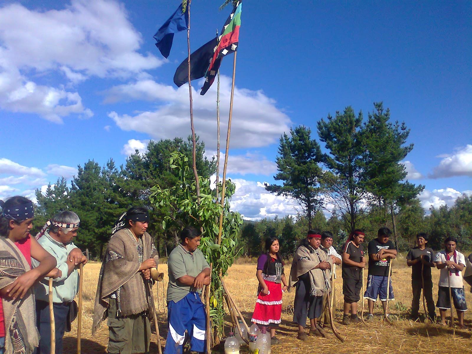 El pueblo Mapuche y la discusión sobre autonomía y  autodeterminación