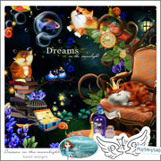 Dreams in the moonlight by Kandi Designs
