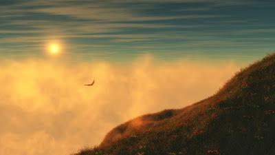 nature-fog-sun-eagle-flying-wallpaper-1920x1080