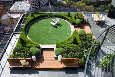 membangun taman diatap rumah
