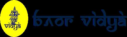 Блог Vidya.LV