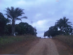 FRONTEIRA DE SONGA MANI/RDC