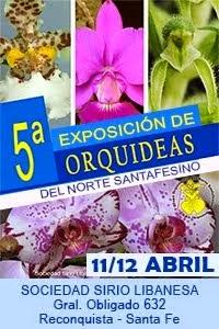 Exposición GONS 2015